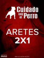 Ofertas de Cuidado Con el Perro, Aretes 2x1