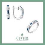 Ofertas de Guvier, Joyería